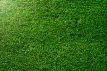 グリーン周りのアプローチを完璧にしてスコアアップを目指そう